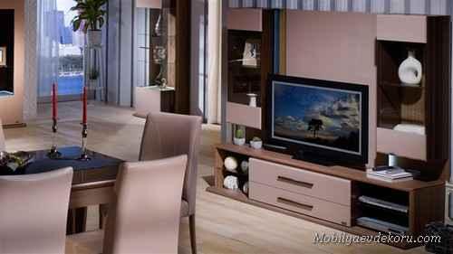 tv-unite-modelleri (1)